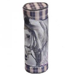 Piórnik szkolny z koniem koń konik tuba (604846)