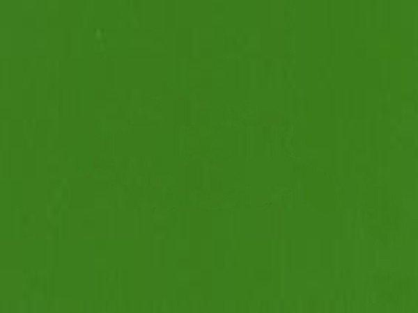 Lakier ELAPOR Color - do Elaporu - zielony