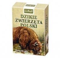 TREFL KARTY 1x55 DZIKIE ZWIERZĘTA POLSKI 3+