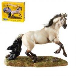 Koń Mustang
