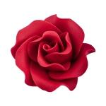 Róża Max 6 szt. bordowa