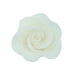 Róża Mini Max 20 szt. biała