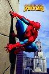 Modecor - opłatek na tort prostokątny Spider-man Wall