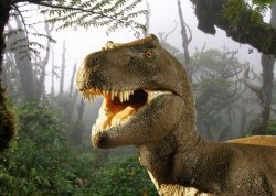 Hokus - opłatek na tort prostokątny Tyranozaur 6