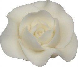Róża Max 6 szt. biała