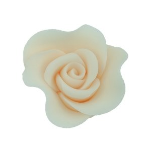 Róża Mini Max 20 szt. ecru