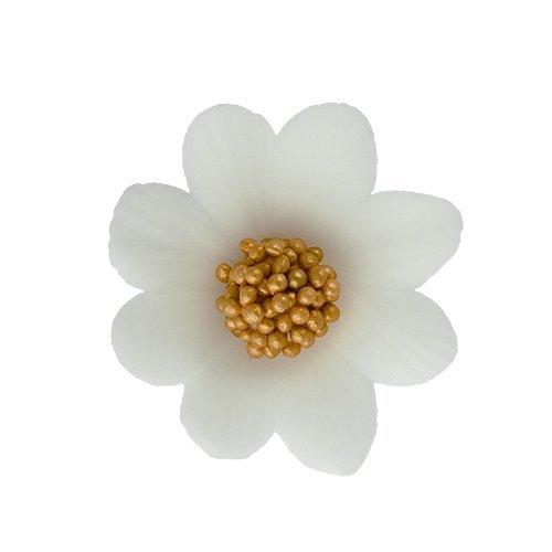 HOKUS - Miłek biały 8 x 10 szt.