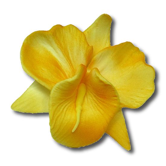 Kwiaty cukrowe - Storczyk opak. 10 szt. żółty