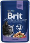 Brit Premium Cat Adult Cod fish - Dorsz w sosie 100g
