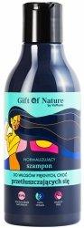 Normalizujący Szampon do Włosów Przetłuszczających się, Gift of Nature