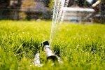 Nawadnianie ogrodu - jakie sprzęty są potrzebne?