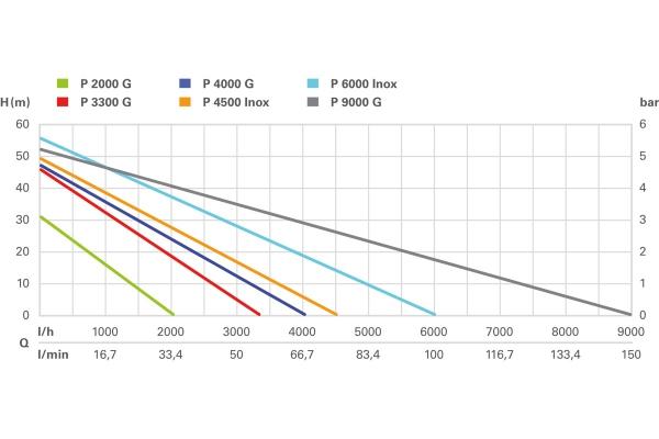 Pompa ogrodowa Metabo P 2000 G (600962000)