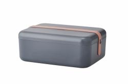 RIG-TIG by Stelton KEEP-IT COOL Pojemnik na Kanapki - Lunchbox