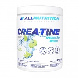All Nutrition Creatine Muscle Max 500g