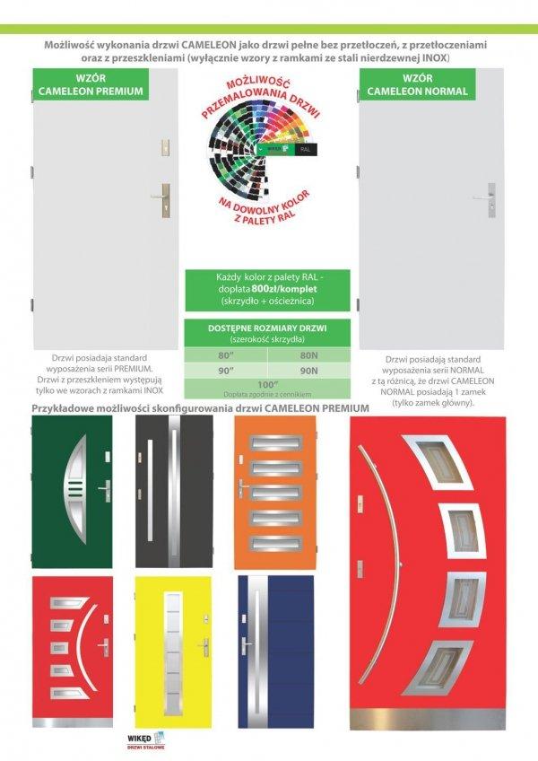 Drzwi wejściowe zewnętrzne Wikęd Premium wzór 17