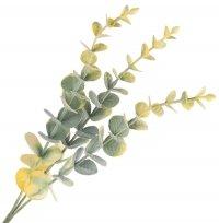 Gałązka Długa Eukaliptus Żółta [ Komplet 10szt ]