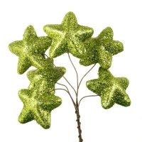 Gwiazdki Brokatowe Pistacja [Komplet - 10 Pęczków]