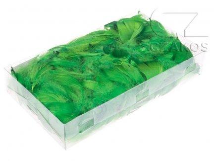 Piórka w pudełku - Zielone [Komplet 10szt.]
