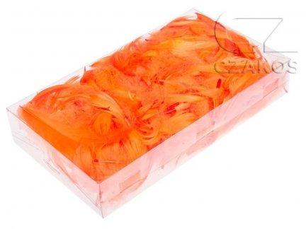 Piórka w pudełku - Pomarańcz [Komplet 10szt.]