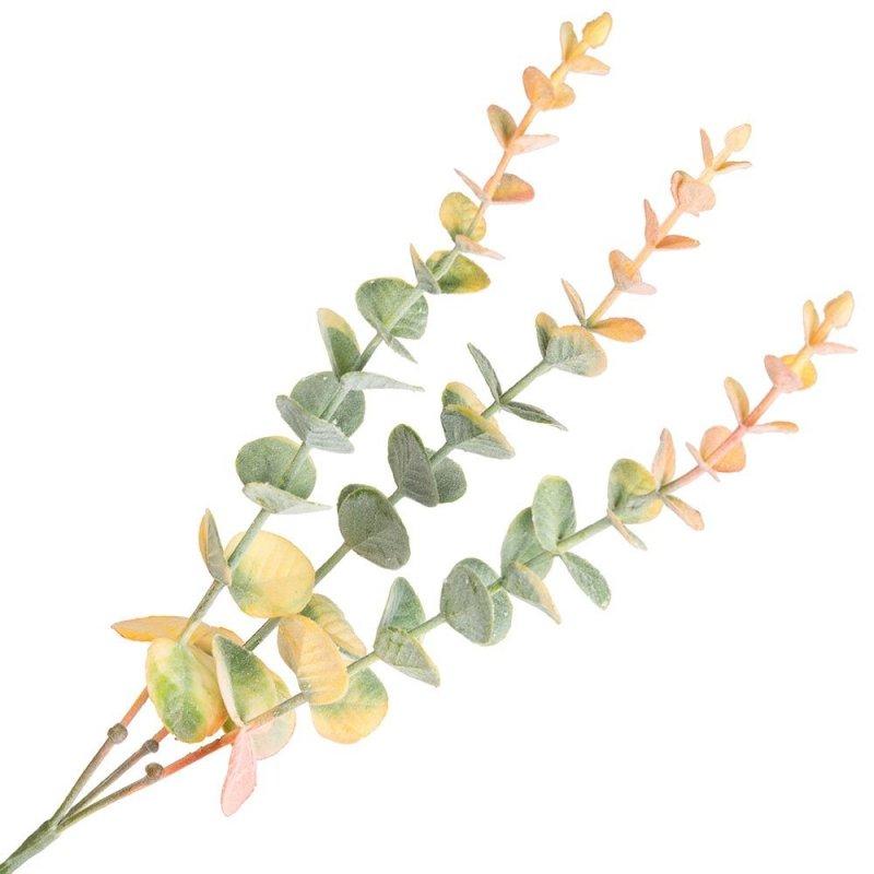 Gałązka Długa Eukaliptus Pomarańcz [Komplet 5szt]
