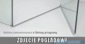 Radaway Euphoria KDJ+S Kabina przyścienna 100x110x100 lewa szkło przejrzyste 383812-01L/383221-01L/383052-01/383032-01