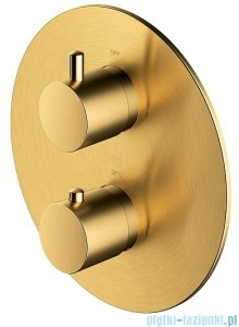 Omnires Y bateria podtynkowa termostatyczna 2-wyjściowa element natynkowy złoto szczotkowane Y1236ROGLB
