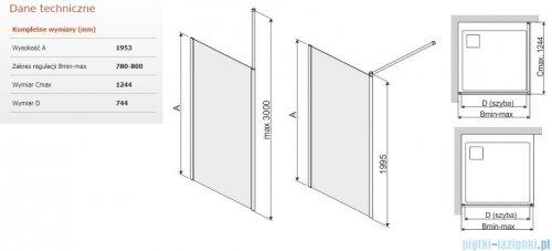 Sanplast Prestige III P/PRIII kabina walk-in 80x195 cm przejrzyste 600-073-1420-38-401