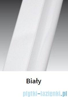 Novellini Drzwi do wnęki z elementem stałym GIADA G+F 138 cm prawe szkło przejrzyste profil biały GIADNGF138D-1A