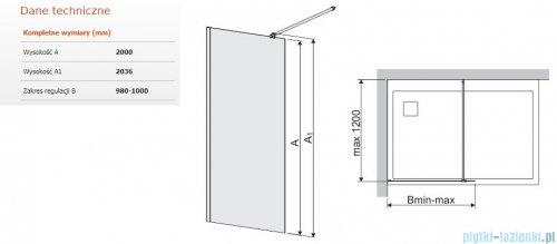 Sanplast Space Wall P/SPACEWALL-100-S kabina walk-in 100x200 cm przejrzyste 600-320-2140-42-401