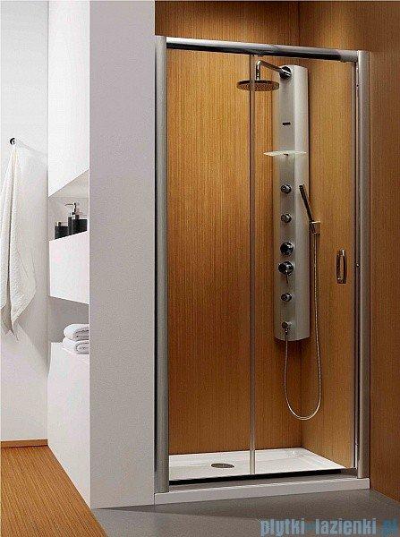 Radaway Premium Plus DWJ Drzwi wnękowe 100 szkło brązowe