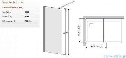Sanplast Space Wall P/SPACEWALL-XL kabina walk-in 80x225 cm przejrzyste 600-320-3120-42-401