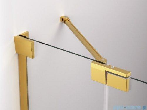 SanSwiss Cadura Gold Line drzwi wahadłowe 110cm jednoczęściowe lewe z polem stałym CA13G1101207