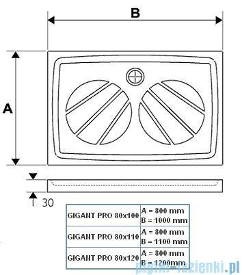 Ravak Brodzik Gigant PRO 110x80 XA03D401010