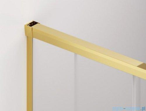 SanSwiss Cadura Gold Line drzwi przesuwne 120cm jednoskrzydłowe lewe z polem stałym CAS2G1201207