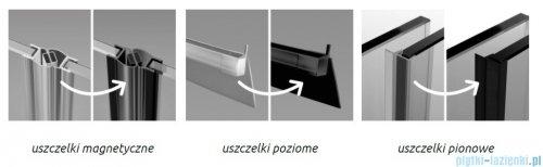 Radaway Furo Black DWJ drzwi prysznicowe 160cm lewe szkło przejrzyste 10107822-54-01L/10110780-01-01
