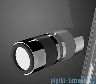 Radaway Eos II Dwd drzwi prysznicowe 190x195 W1 szkło przejrzyste detale