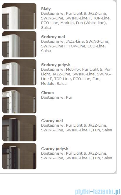 SanSwiss Swing Line F SLF2 Wejście narożne z drzwiami 100cm profil połysk Prawe SLF2D10005007