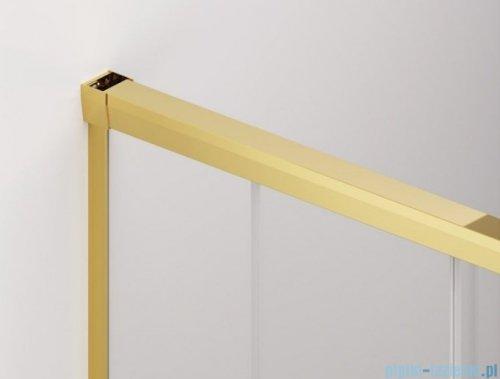 SanSwiss Cadura Gold Line kabina Walk in 110cm lewa ze ścianką przesuwną CAW2G1101207