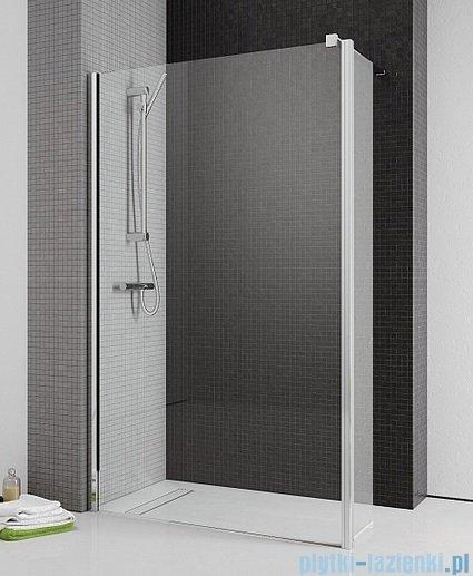 Radaway Eos II Walk-in kabina prysznicowa 100 lewa szkło przejrzyste + brodzik Delos C + syfon
