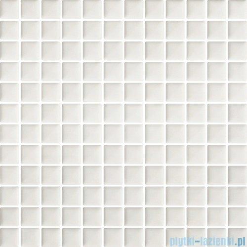 Paradyż Orrios bianco mozaika ścienna 29,8x29,8