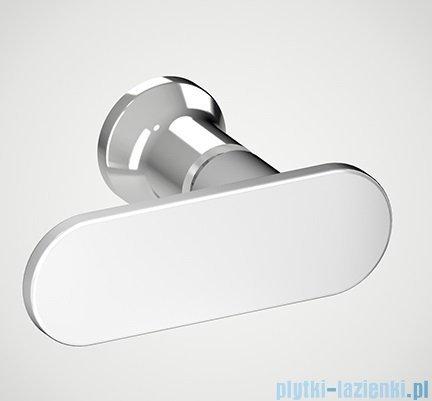 New Trendy New Soleo Plus drzwi wnękowe z wspornikiem krzyżakowym 100x195 cm przejrzyste D-0139A/D-0094B-WP