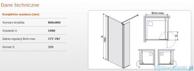 Sanplast kabina Walk-In z elementem ruchomym PR2/PRIII 80x198 cm przejrzyste 600-073-0970-38-401