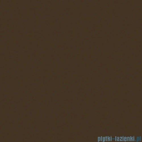 Paradyż Inwesta brązowa błyszcząca płytka ścienna 19,8x19,8