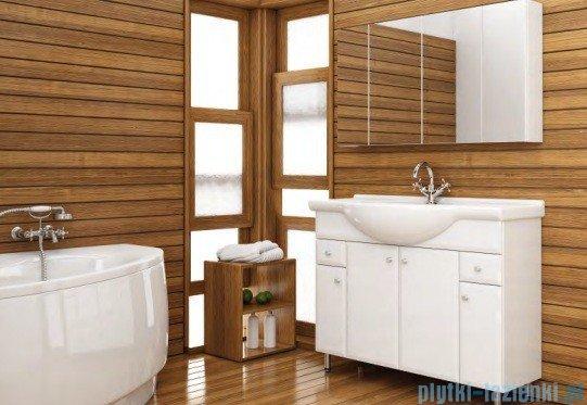 Aquaform Dallas szafka wisząca z lustrem 60cm biały 0408-530120