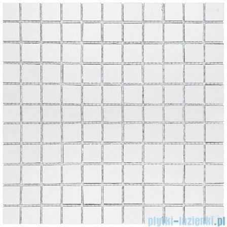 Dunin Vitrum mozaika szklana 30x30cm 001