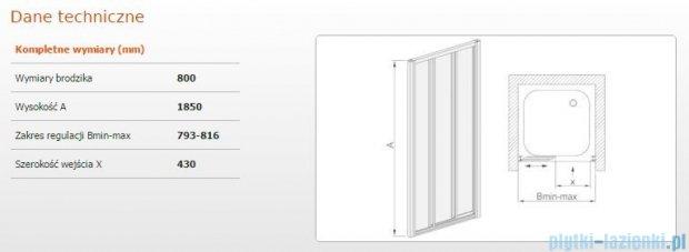 Sanplast drzwi przesuwne DTr-c-80 szkło Sitodruk W4 600-013-1621-01-410