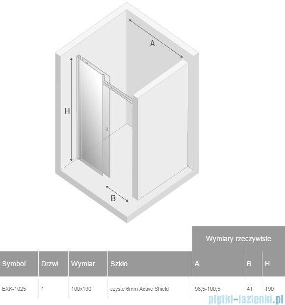 New Trendy Diora drzwi prysznicowe 100  EXK-1025