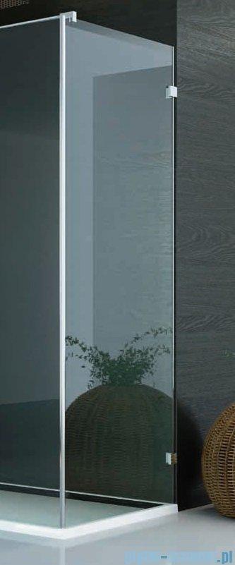 SanSwiss PUR PU31 Ścianka boczna wymiary specjalne 100-160/do 200cm Master Carre PURDT3SM41030