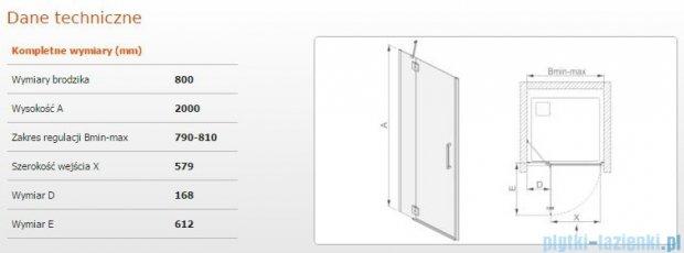 Sanplast drzwi skrzydłowe DJ2L(P)/AVIV-80 80x200 cm lewa przejrzyste 600-084-0620-42-401