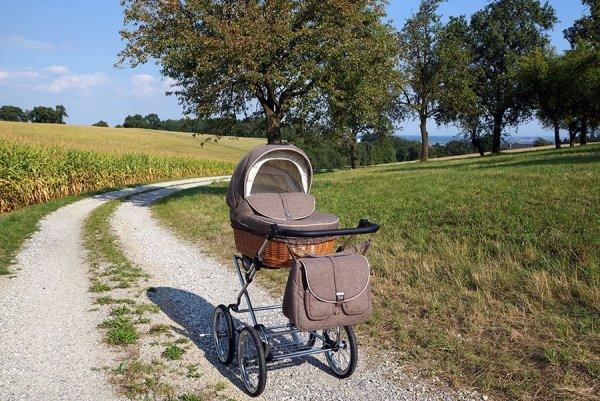 Retro Deluxe | 2 in 1 mit Liegewanne und Sportwagen | oder 3 in 1 mit Autoschale | Kombi-Kinderwagen | Braun, Naturweidenkorb